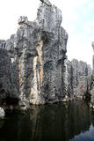 Shilin stone forest in kunming yunnan Stock Images