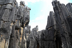 Shilin stone forest in kunming yunnan Royalty Free Stock Images