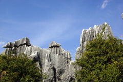 Shilin Stone Forest in Kunming, Yunnan, China Stock Photography