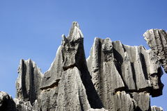 Shilin Stone Forest in Kunming, Yunnan, China Royalty Free Stock Photo