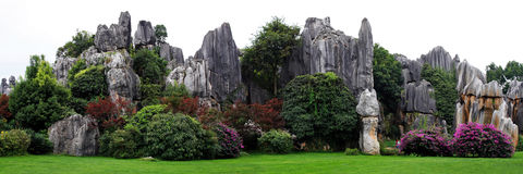 Shilin Stone Forest Park Royalty Free Stock Images