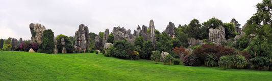 Shilin Stone Forest Park Stock Photography