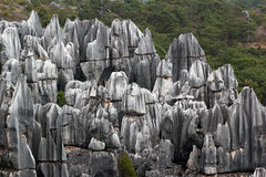 Shilin stone forest park. Yunnan, China Royalty Free Stock Images