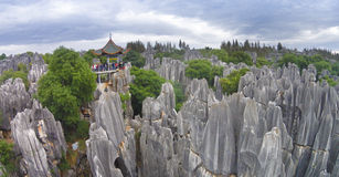 Shilin yunnan china. Shilin(stone forest) in yunnan china asia royalty free stock images