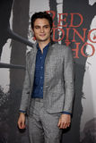Shiloh Fernandez. At the Los Angeles premiere of 'Red Riding Hood' held at the Grauman's Chinese Theatre in Hollywood, USA Royalty Free Stock Image