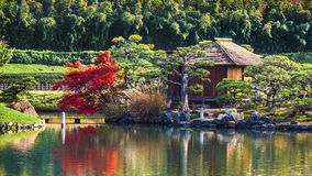 Shima-Jaya Teahouse no jardim Koraku-en em Okayama Fotos de Stock