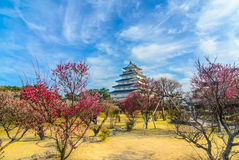 Shimabara castle with plum blossoms in spring Stock Photo