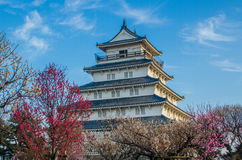 Shimabarakasteel met pruimbloesems in de lente Stock Foto's