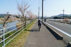 Shimanami Kaido最普遍的自行车路线在日本 库存图片