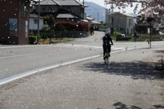 Shimanami Kaido самая популярная трасса велосипеда в Японии стоковые фото