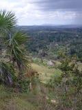 Shimba Hills scenisk sikt Royaltyfria Bilder