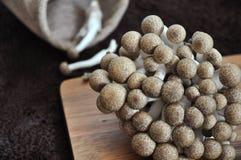 Shimeji Mushroom on Wooden Board Royalty Free Stock Photo