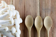 Shimeji mushroom and wooden spoon. Royalty Free Stock Images