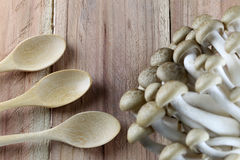 Shimeji mushroom and wooden spoon. Stock Image