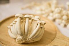 Shimeji witte paddestoelen, healty voedsel voor dieetmensen Royalty-vrije Stock Afbeeldingen