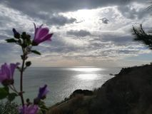Shimmer моря стоковое фото rf