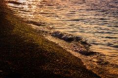 Shimmering Shoreline Stock Images
