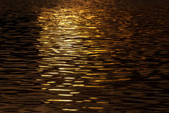 Shimmering Water in the Light of Sunset Royalty Free Stock Images