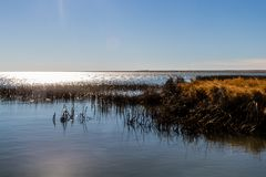 Shimmering waters, Lake McGregor Provincial Recreation Area, Alberta, Canada royalty free stock image