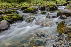 Shimna river. In Northern Ireland, flowing over rocks and boulders as it passes through forest and wood Royalty Free Stock Image