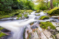 Shimna River. In Tollymore Forest Park at the foot of the Mourne Mountains Stock Image
