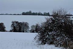 Shimpling Suffolk i snön royaltyfri fotografi
