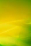 shine известки Стоковое фото RF