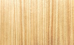Shine new saturated wood texture.  Royalty Free Stock Photography