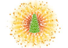 Shine tree Royalty Free Stock Photos
