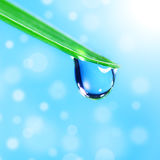 Shine water drop Royalty Free Stock Photos