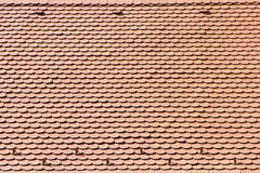 Shingle. Red shingle abstract background pattern Royalty Free Stock Image