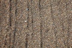 Shingle background. Pea shingle pebble gravel background royalty free stock photo