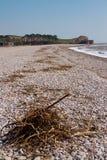 Shingle beach Devon England Royalty Free Stock Photo