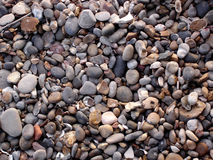 Shingle Beach Close-Up Stock Images