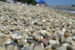 Shingle. Pebbles closeup on the beach Royalty Free Stock Photos