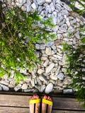 Shingle rocks. Close up background stock image
