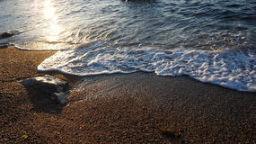 Shingle and Rocks. A shot of a wave receding from a shingle covered beach with a wet rock protruding from the shingle to the left of the picture Royalty Free Stock Images