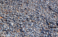Shingle or stones on a beach. Royalty Free Stock Images