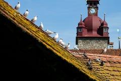 Shingled roof Lucerne stock photography