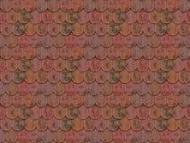 shingles Royaltyfria Foton