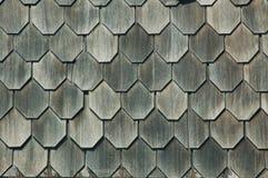 shingles royaltyfri bild