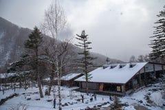 Shinhotaka Ropeway, Japonia Alps, Japonia fotografia royalty free