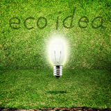 Shining bulb in grass room background,eco idea Stock Photos
