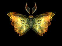 Shining Butterfly Royalty Free Stock Photography