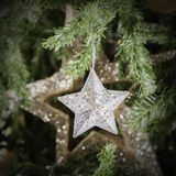 Shining Christmas stars on Christmas tree - Square composition Stock Photos