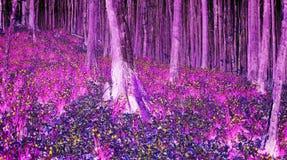 Pandora – Dreaam World of Avatar. Shining colors in the forest. Night scene. Dreaam World of Avatar stock photography