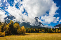 Shining day in Canadian Rockies Royalty Free Stock Photos