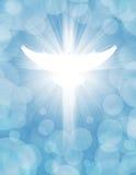 Shining dove Royalty Free Stock Image