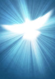 Shining dove with rays Royalty Free Stock Photo