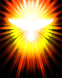 Shining dove with rays. On black royalty free illustration